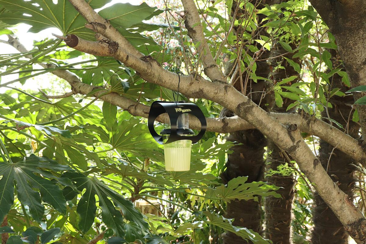 フマキラー 超ハチ激取れを木陰に設置